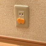 電気コードやコンセントプラグは感電の危険があります。