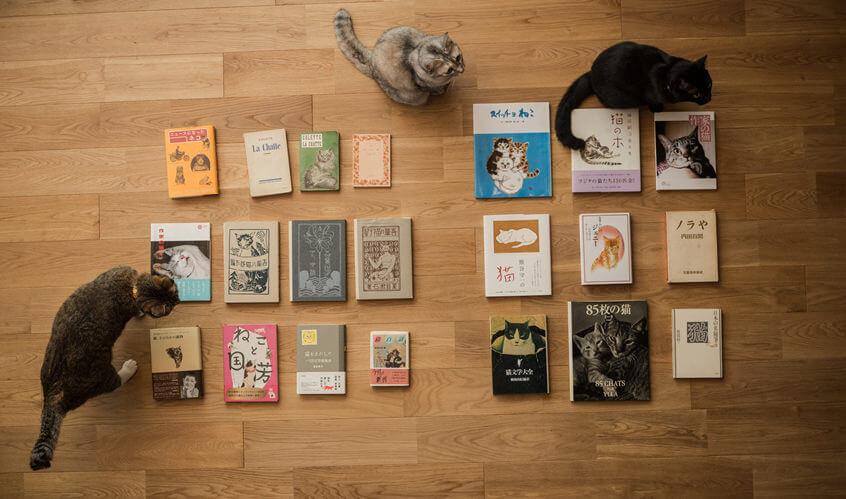 長年の夢が実って猫本専門書店オープン